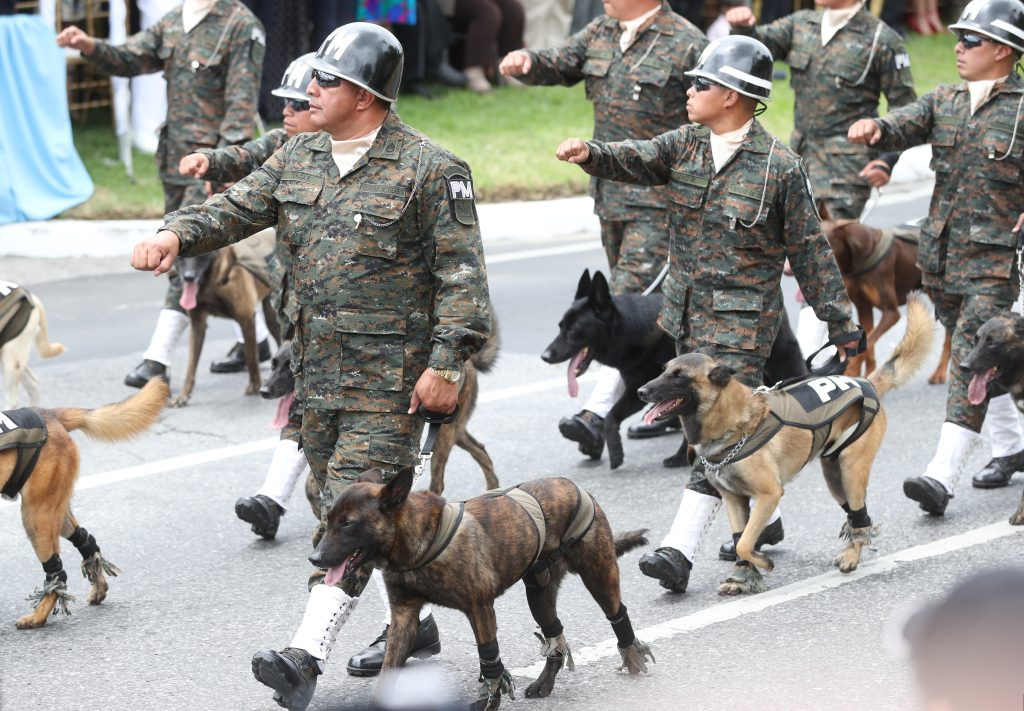 Unidades caninas del Ejército de Guatemala a su paso por la Avenida Reforma, zona 9. Foto Prensa Libre: Esbin García