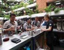 El café guatemalteco tiene varias ventajas competitivas que los clientes están dispuestos a pagar más por su calidad. (Foto Prensa Libre: Hemeroteca)