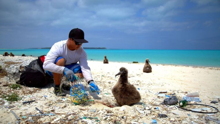 Personas de todo el mundo se reunieron para limpiar playas y celebrar la importancia de los océanos en honor al Día Mundial de los Océanos. (Foto Prensa Libre: Twitter World Oceans Day)