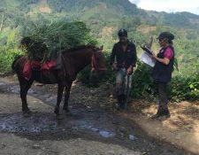 Fotografía proporcionada por ProDatos, que muestra uno de los parajes rurales en donde se tomó parte de la muestra. (Foto Prensa Libre: ProDatos)