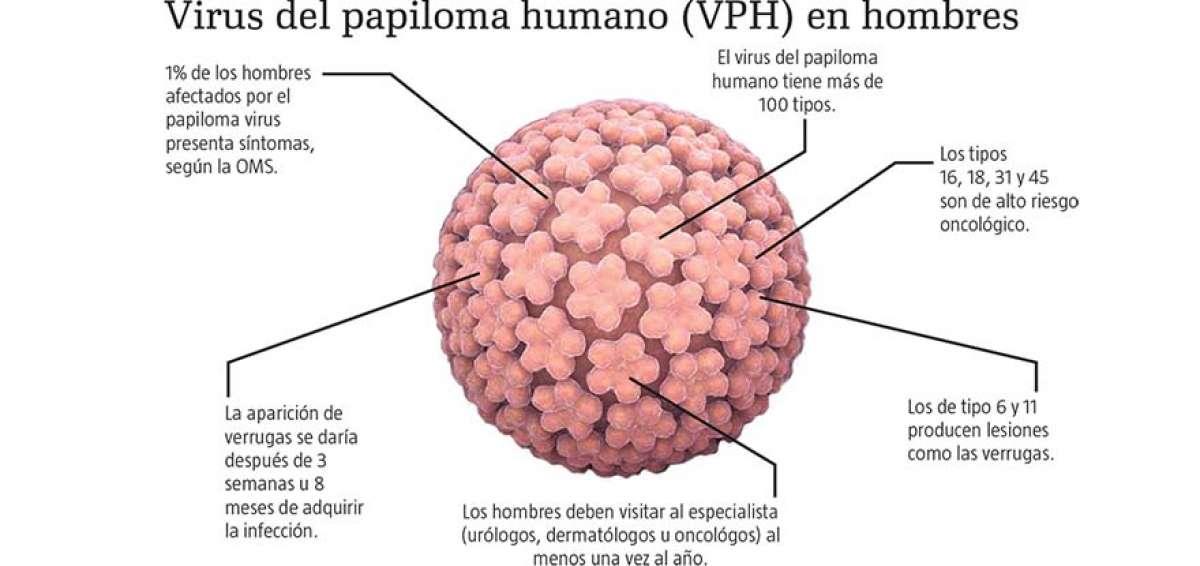 Virus vph fotos