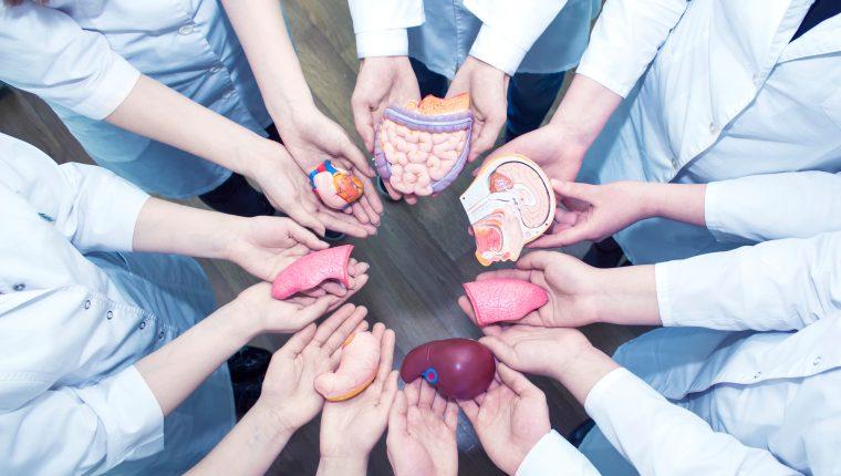 Cada 6 de junio se celebra el Día Mundial del Paciente Trasplantado, establecido por la Organización Mundial de la Salud (OMS). (Foto Prensa Libre: Servicios).