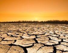 Las sequías son más