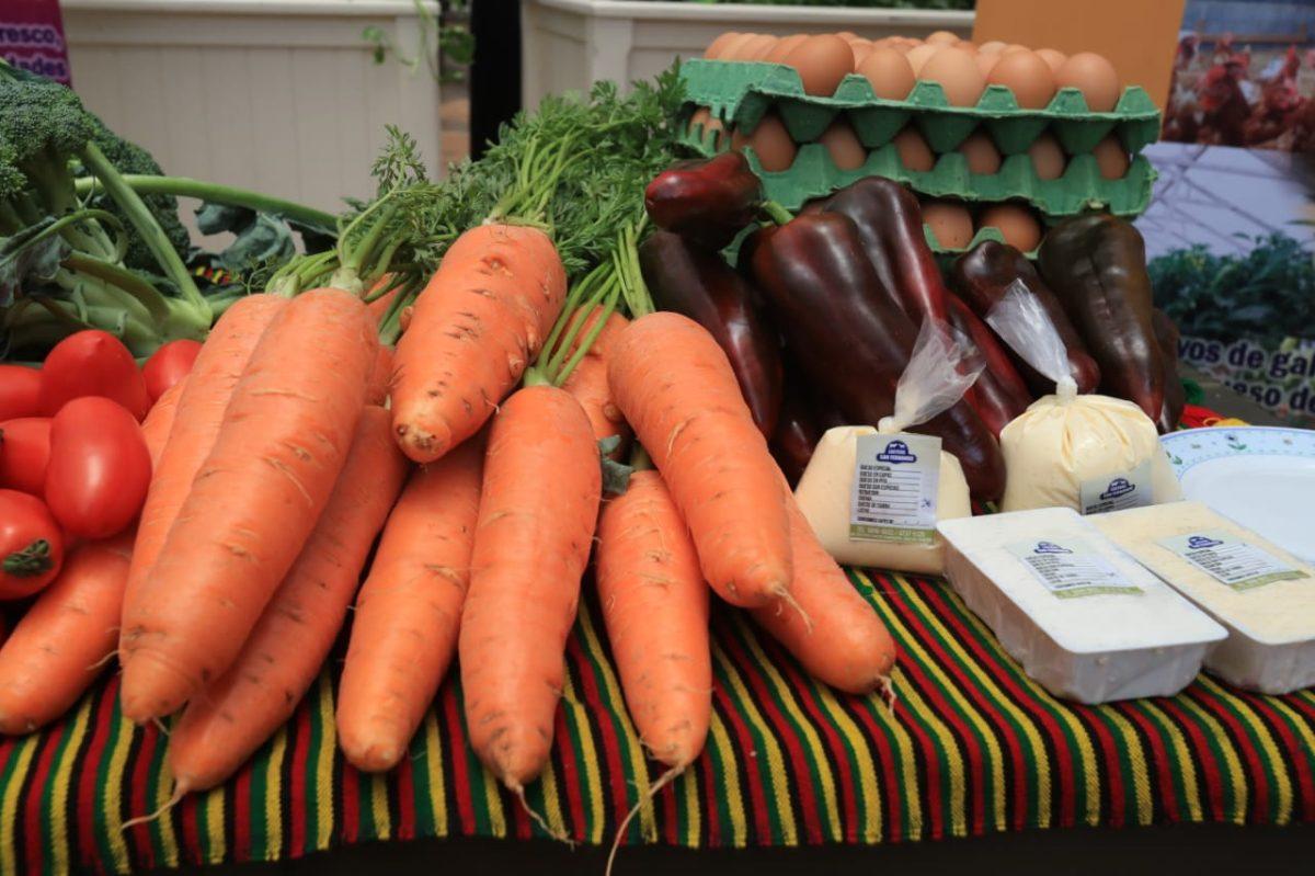 Programa  de Naciones Unidas  le apostará a la agricultura familiar en los próximos 10 años