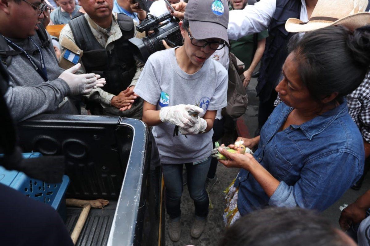 PNC rescata animales que estaban a la venta en los alrededores Mercado Central