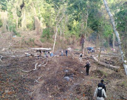 Persiste destrucción y caza de jaguares en el Parque Nacional Laguna Lachuá