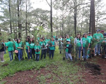 350  árboles de ciprés fueron plantados como parte del programa Siembra una Vida. (Foto Prensa Libre: Erick Ávila)