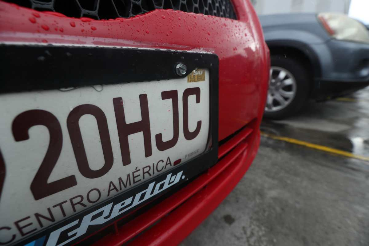Vehículos seguirán con placas de cartón: SAT rechaza ofertas por no cumplir requisitos