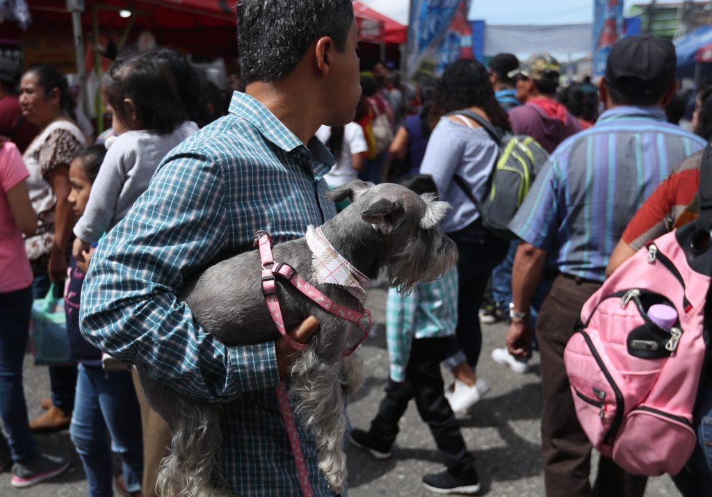 Familias llevaron su mascota y recorrieron los locales donde se ofrecen varias degustaciones. (Foto Prensa Libre: Esbin García)