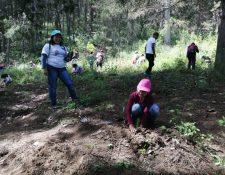 De las 150 personas que participaron en la reforestación más del 30 por ciento eran niños. (Foto Prensa Libre: María Longo)