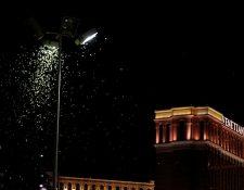 Cientos de miles de saltamontes han llegado a Las Vegas atraídos por las luces neón de esta ciudad. (Foto Prensa Libre: AFP)