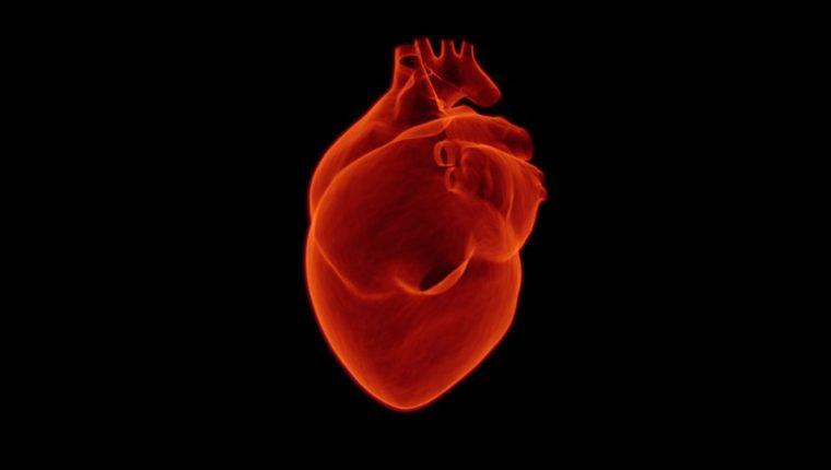 ¿Qué pasa después de un paro cardíaco?  (Foto Prensa Libre: Pixibay).