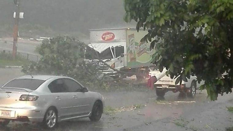 Un árbol cayó sobre un vehículo en el kilómetro 152, Mazatenango. (Foto divulgada por Conred)