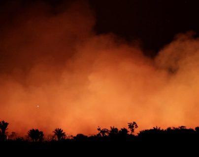 La selva amazónica se ha vuelto cada vez más susceptible a sufrir incendios. REUTERS