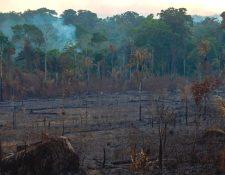 Los líderes del G7 acordaron el lunes entregar apoyo económico y logístico a los países afectados que están luchando apagar los incendios en la Amazonía. GETTY IMAGES