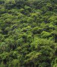 El debate sobre el cuidado de la Amazonía incluye consideraciones políticas y de soberanía.