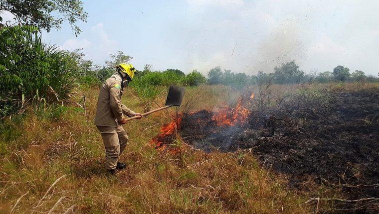 Bomberos del Estado de Acre trabajando en la extinción del incendio en la selva amazónica en la región de Cruzeiro do Sul. (Foto Prensa Libre: EFE)