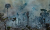 """Handout aerial picture released by Greenpeace showing smoke billowing from the Jamanxim National Forest - APA (Environmental Protection Area) - in the Amazon biome in the municipality of Novo Progresso, Para State, Brazil, on August 23, 2019. - Hundreds of new fires are raging in the Amazon rainforest in northern Brazil, official data showed on August 24, 2019, amid growing international pressure on President Jair Bolsonaro to put out the worst blazes in years. The fires in the world's largest rainforest have triggered a global outcry and are dominating the G7 meeting in Biarritz in southern France. (Photo by Victor MORIYAMA / GREENPEACE / AFP) / RESTRICTED TO EDITORIAL USE - MANDATORY CREDIT """"AFP PHOTO / GREENPEACE / VICTOR MORIYAMA"""" - NO MARKETING - NO ADVERTISING CAMPAIGNS - DISTRIBUTED AS A SERVICE TO CLIENTS"""