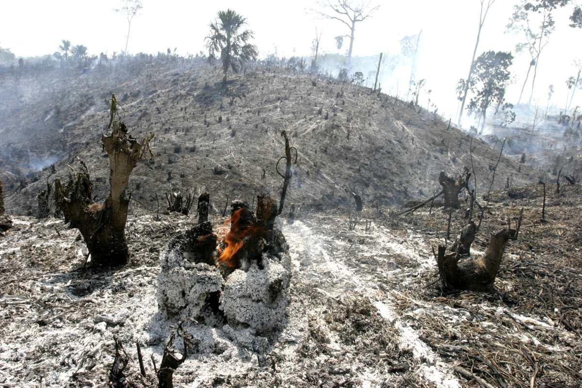 Controlan dos incendios en la Reserva de la Biosfera Maya