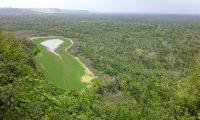 El parque es considerado el más grande de Centroamérica. (Foto Prensa Libre: Cortesía Parque Nacional Laguna del Tigre)