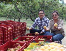 Turistas tendrán la oportunidad de participar en la cosecha de melocotones y degustarlos durante el Primer Festival del Melocotón en Salcajá, Quetzaltenango. (Foto Prensa Libre: María Longo)