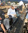 30 empresas de la construcción podrían ocupar 1 mil 500 plazas, según proyecciones del Ministerio de Trabajo. (Foto Prensa Libre: Hemeroteca)