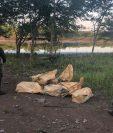 Los restos de aparente producto narcótico fueron localizados. (Foto Prensa Libre: Ejército de Guatemala)