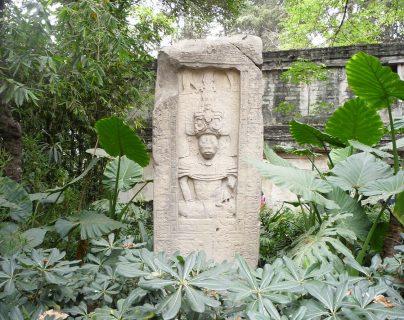 Imagen de referencia de una Estela localizada en la cercanía del campo Maya de la pieza que sería subastada. (Foto Prensa Libre: Museo Nacional de Antropología)