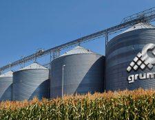 La compañía  Gruma quiere manejo integral de maíz blanco. (Foto Prensa Libre: Forbes)