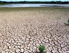 El útlimo informe del IPCC destaca la fuerte conexión entre el uso de la tierra y el cambio climático.(picture-alliance/dpa/J. Büttner)