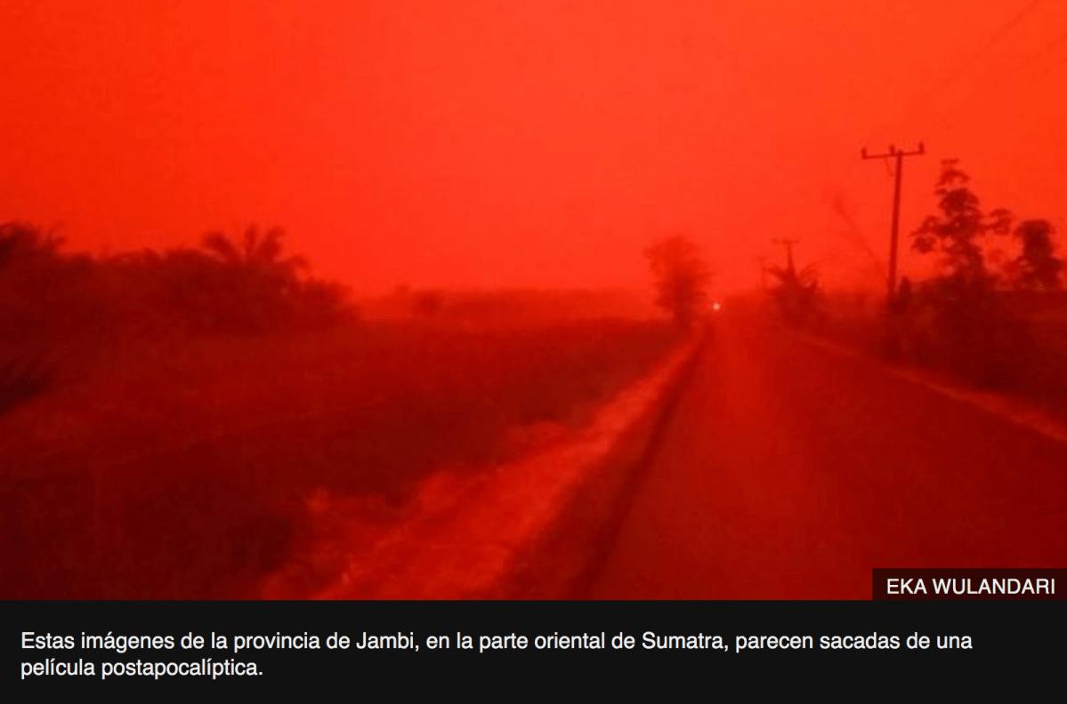 """""""Esto no es Marte"""": las espectaculares imágenes en Indonesia que muestran el cielo teñido de rojo"""