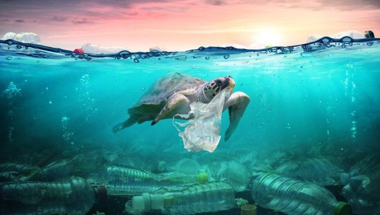 ¿Estamos en la Edad del Plástico?