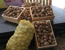 Anualmente quetzaltenango produce seis mil toneladas de papas como materia prima para Lay´s. (Foto Prensa Libre: María Longo)