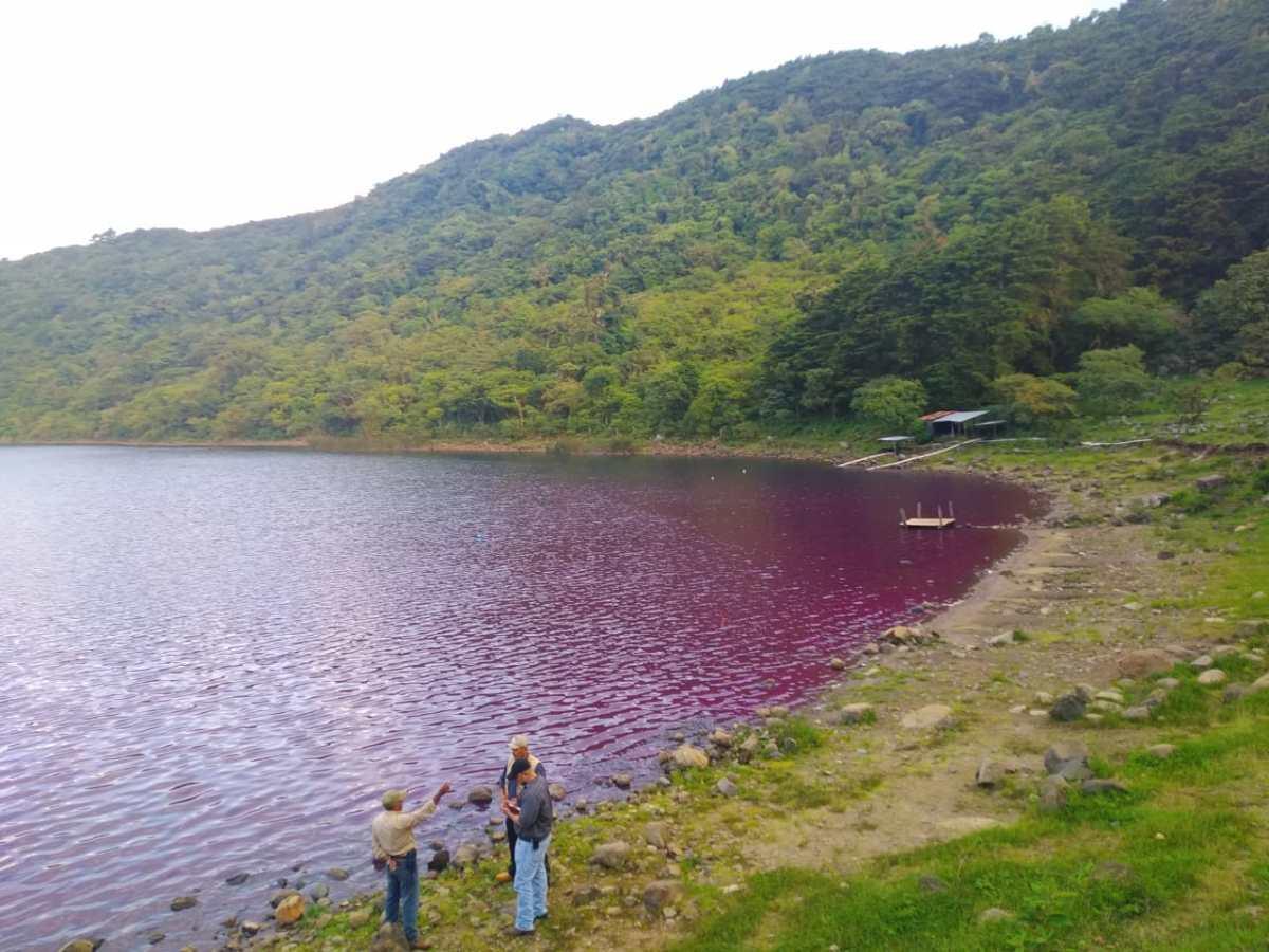 Por qué el agua de la laguna de Ipala está de color rosa