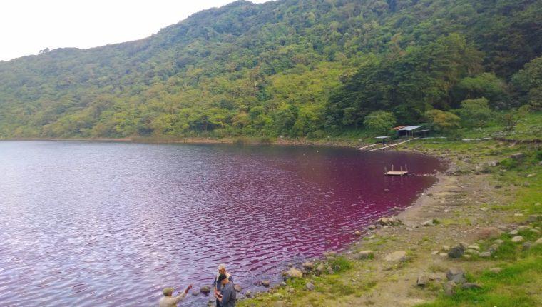 El agua de la laguna de Ipala cambió de coloración por causa que se están estudiando. (Foto Prensa Libre: Conap)