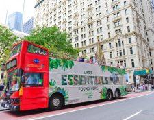 La publicidad busca seducir al gran mercado de visitantes estadounidenses. (Foto Prensa Libre: ICT)