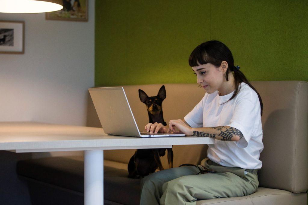 Mascotas y oficina