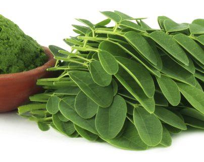 Las hojas, flores y semillas de la moringa son ricas en proteínas, calcio, hierro y vitamina C. (Foto Prensa Libre, vegalicious.com)