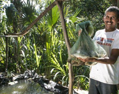 Suecia ha apoyado programas para el cultivo de peces en Chiquimula. (Foto: FAO/Programa de cooperación Sueca)
