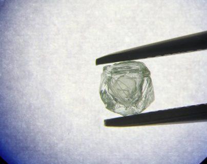 Se estima que la inusual piedra preciosa tiene unos 800 años de antigüedad. ALROSA