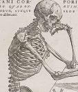 Todavía no sabemos todo lo que hay que saber de nuestra anatomía. Foto BBC