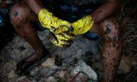 AME3487. CABO DE SANTO AGOSTINHO (BRASIL), 22/10/2019.- Detalle de los guantes y las piernas sucias de crudo de un voluntario después de la limpieza de las algas marinas en la playa de Itapuama en el municipio de Cabo de Santo Agostinho en el estado de Pernambuco este martes. El Gobierno de Brasil autorizó la movilización de 5.000 efectivos del Ejército y de tres aviones de la Fuerza Aérea para la las labores de limpieza y contención del derrame de petróleo crudo que desde septiembre pasado se arrastra por las playas del litoral nordeste del país. EFE/Brenda Alcântara