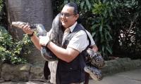 Carlos Patzán carga a un pitón reticulado de cinco metros de largo. (Foto Prensa Libre: Cortesía).