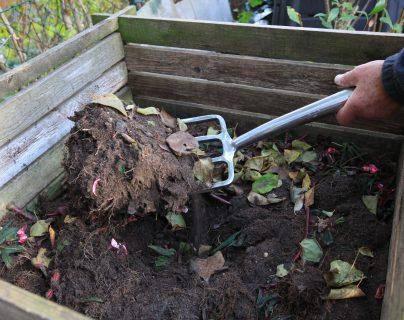 """Todos los residuos """"verdes"""" que tengamos de la cocina pueden servir para hacer compost. Foto Prensa Libre: DPA"""
