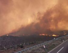 Una de las área donde se registran incendios en Tijuana. (Foto Prensa Libre: @EnsCompany).