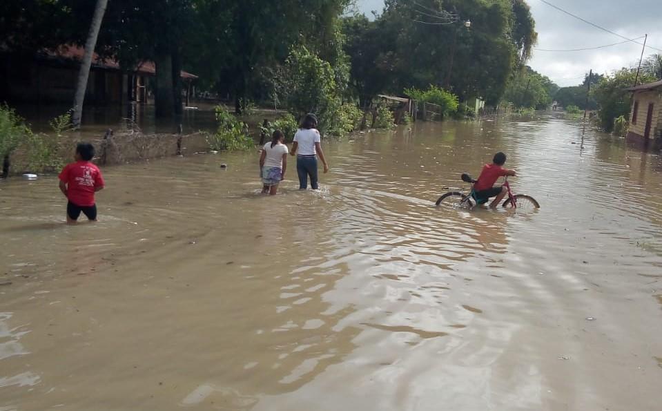 Lluvias anegan varios sectores de Las Cruces, donde vecinos caminan entre agua y lodo