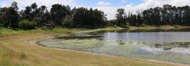 Más del 50 por ciento de la laguna de Lemoa se secó y la lluvia del actual invierno no logró elevar el nivel.  (Foto Prensa Libre: Héctor Cordero).