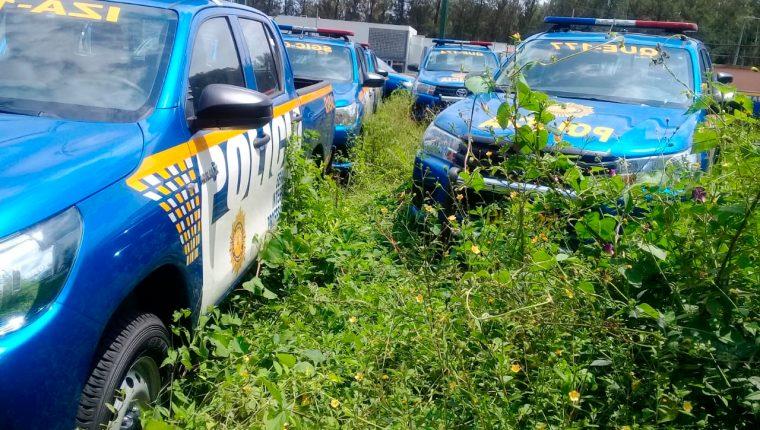 Maleza crece entre patrullas estacionadas en la sede de la academia en la Colonia Cipresales zona 6 capitalina. (Foto Prensa Libre: Mike Castillo)