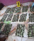 El Ministerio Público y la Policía Nacional Civil  decomisaron droga y dinero en Retalhuleu. (Foto Prensa Libre:  Cortesía)