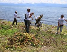 Un grupo de pescadores artesanales limpia las orillas del Lago de Izabal. (Foto Prensa Libre: Dony Stewart)